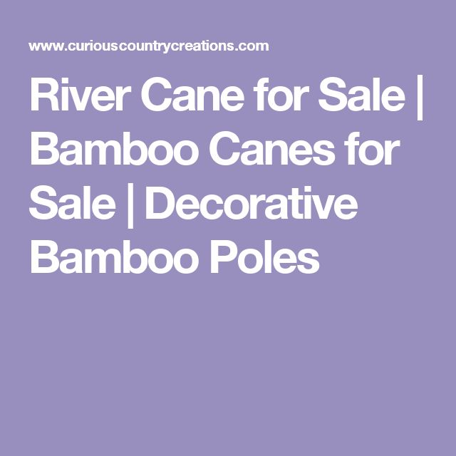 River Cane for Sale | Bamboo Canes for Sale | Decorative Bamboo Poles