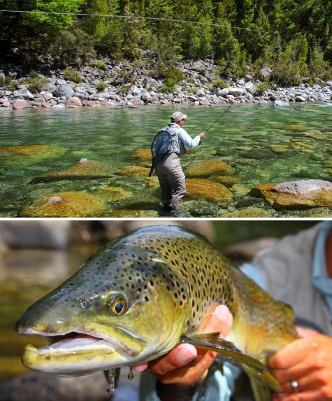 1000+ ideas about fly fishing magazine on pinterest | fly fishing, Fishing Reels