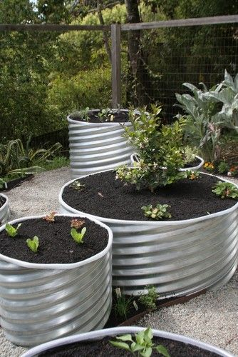 Galvanized steel containers are imaginative and edgy, lending a sculptural quality to arrangements. This lightweight material wears well, making it a clever choice for a container garden. (drainage culvert cut into pieces:edges are sharp and uneven. These need to be polished with power tools, and covered with any flexible material, such as sheet metal or reinforced fexipble hose/pipe)