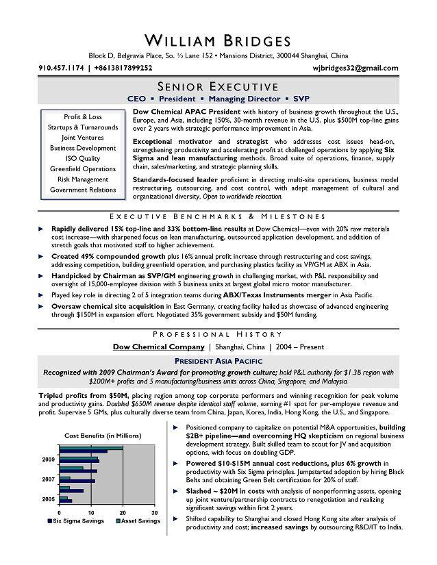 Award-winning CEO sample resume; resume writers Chicago, Raleigh, NYC.