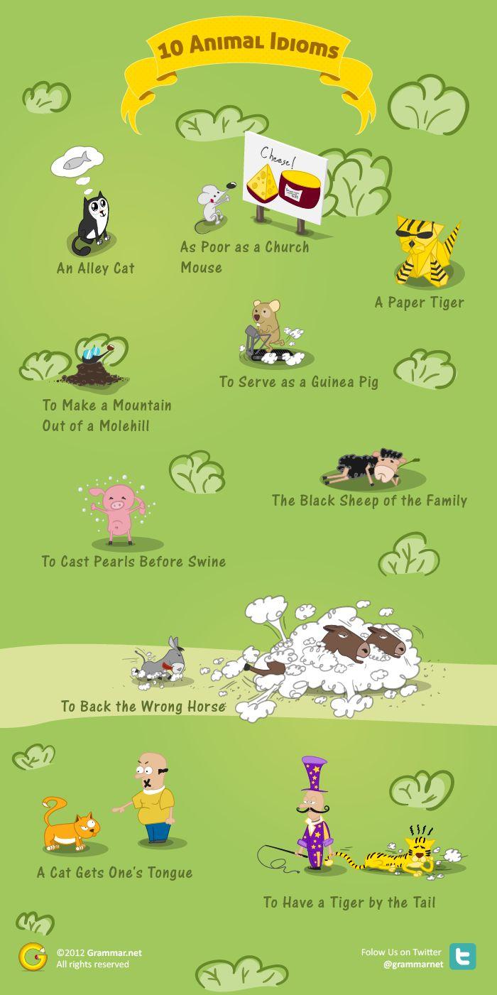 Aprende inglés: 10 idiomas animales #infografia #infographic #education                                                                                                                                                                                 Más