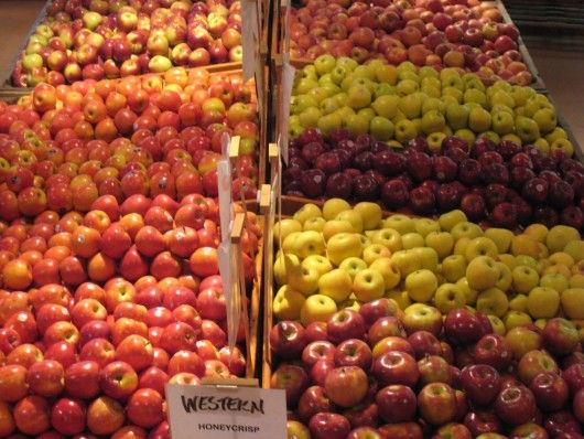 New Jersey Apples Are Ripe for the Picking   Jersey Bites