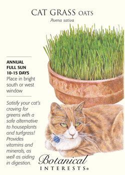$1.59 Satisfy your cat's craving for greens with a fresh ...