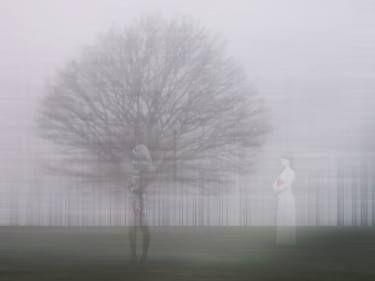 "Saatchi Art Artist André Pillay; Photography, ""Stillness 1"" #art  #SaatchiArt  #trees  #contemplative  #stillness #photographyart"