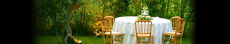 Mesa junto al olivo