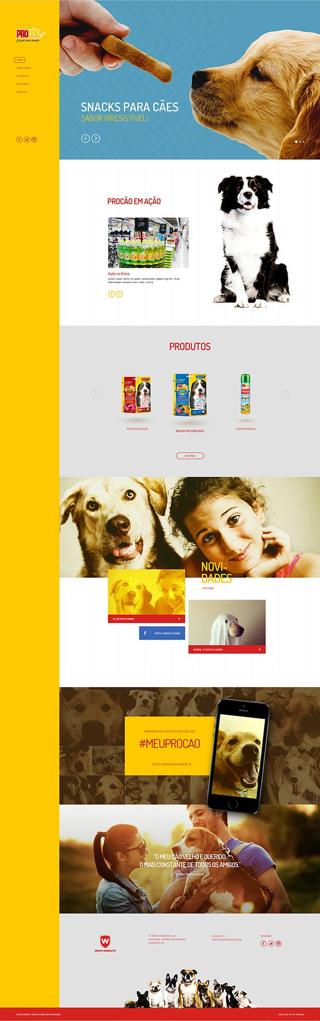 Procão Website Design by Fabiano Procópio #website #website #goodstuff