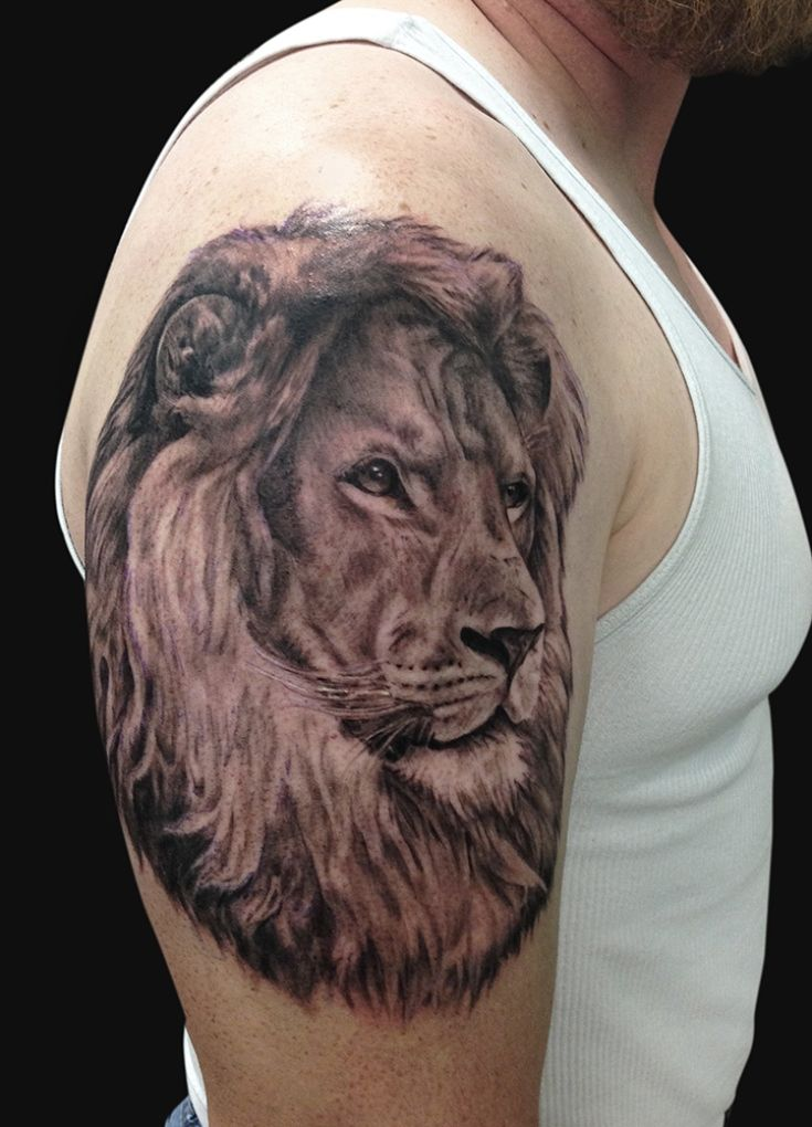 Lion Tattoo Images