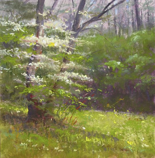 Spring Dogwood by Lisa Stauffer Pastel With Watercolor Underpainting ~ 9 x 9