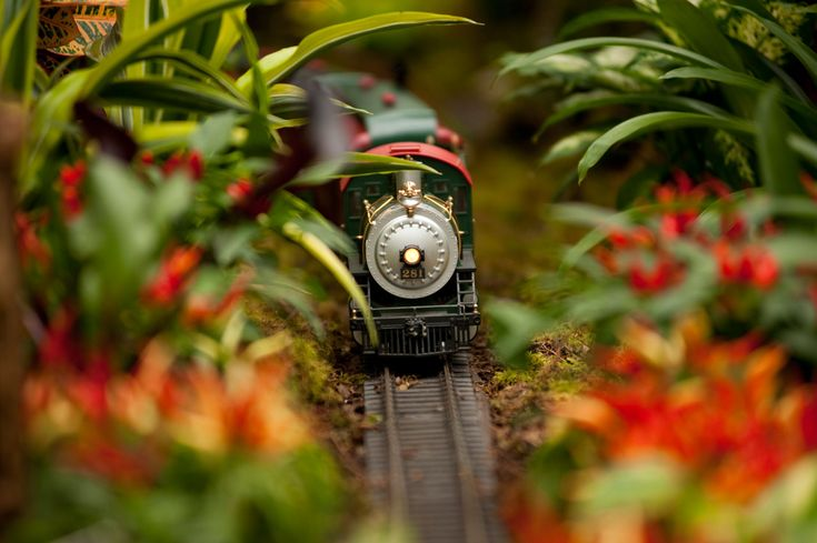 Step into this annual New York tradition where model trains zip around landmark replicas in the glow of the Enid A. Haupt Conservatory. Explore 250 acres of crisp winter landscapes during tours of the Garden's many collections, experience festive evening events, and take care of your holiday shopping list!