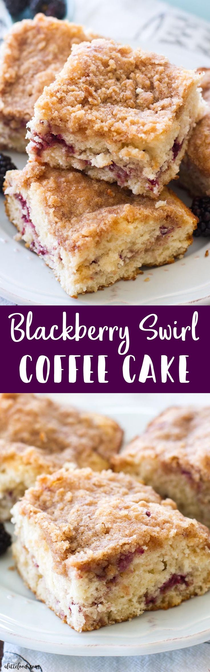 This Blackberry Coffee Cake recipe is a simple yet elegant addition to any breakfast, brunch, or afternoon coffee break! It's light, fluffy, filled with a blackberrypuree, and topped with a sweet brown sugar topping!