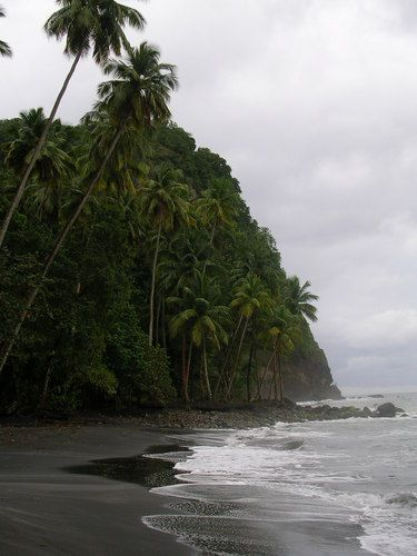 beach anse a voile Le Prêcheur