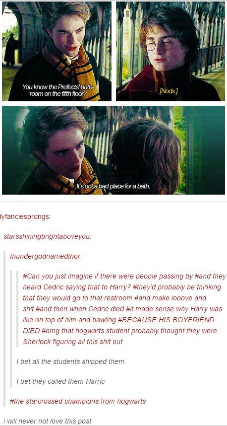 """harry potter tumblr<<< BUT REMEMBER IN THE ORDER OF THE PHOENIX, DUDLY SAID, """"Who's [Cedric], I'd he your boyfriend?"""""""