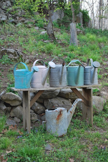 Rustic...old bench with vintage watering cans.