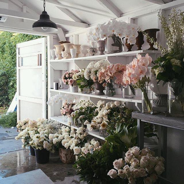 17 Best Ideas About Flower Shop Displays On Pinterest