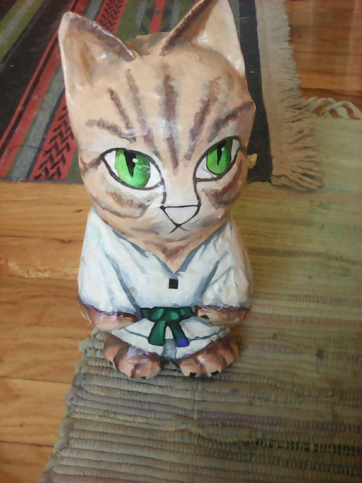 TKD cat