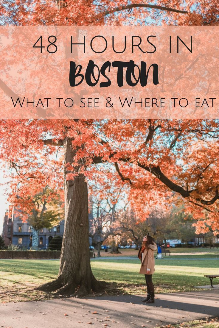 How to spend 48 Hours in Boston. A Boston Travel Guide Things to do. What to see and where to eat! Exploring Boston beyond the Freedom Trail. All you need for 48 hours in Boston! #TravelDestinationsUsaBoston