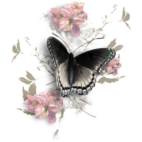 MagicalReality_VinMem1_white butterfly-pink florals.png ❤ liked on Polyvore featuring butterflies, backgrounds, fillers, flowers and effects