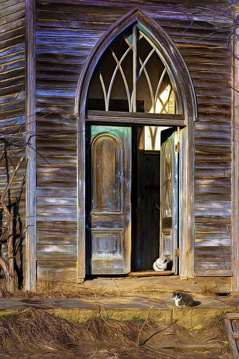 """Church Cats"" by Nikolyn McDonald includes just two of the feral felines that inhabit the long abandoned Old Knox Church (also called the Old Methodist and the Liberty Baptist Church) in Fremont County, Iowa.  door,gothic arch,doorway,wary,building,1896,loess hills,southwestern,western,history,historical,domestic,mammals,outdoor,watching,pets,waiting,outside,open,patience,patient,patiently,nikki"