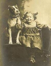 nanny dog Archives - Animal Advocates Alliance Animal Advocates ...