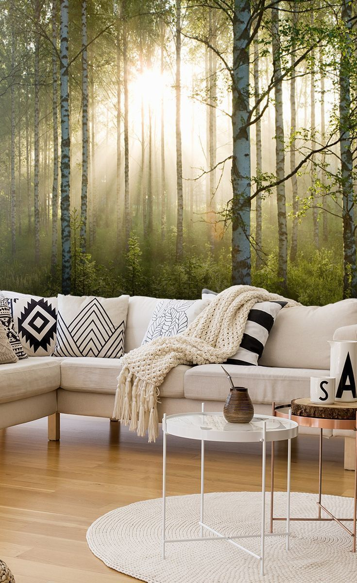 Birch Forest Sunlight Wallpaper Mural Wallsauce Us Fea