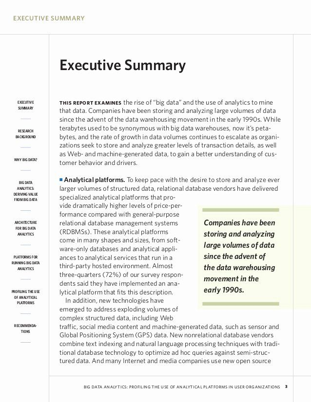 Sample Of Executive Summary Report Luxury Mapsingen Example Template For Academic Paper