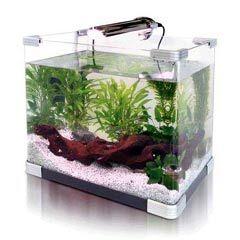 Arcadia Arc Fish Tank 20L Other Fish Tanks for Sale
