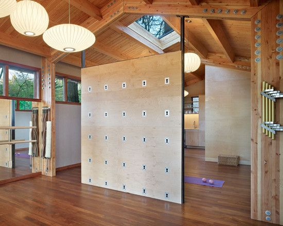 Modern Home Gym Design, Pictures, Remodel, Decor and Ideas - page 6