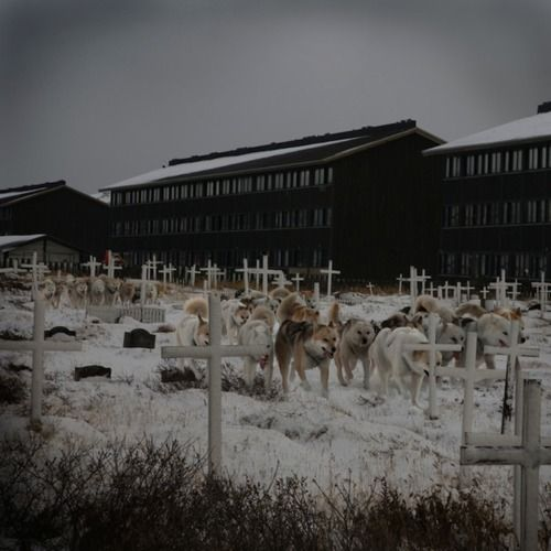 Just me and my buddies. Strolling through the crosses. (Created byAnthony Goicolea.)