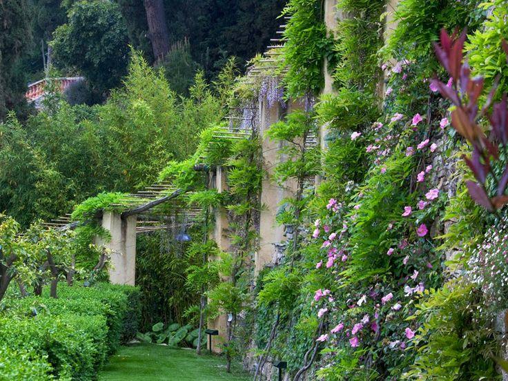 Ultimissime dall'orto: Villa della Pergola, Alassio (Savona)