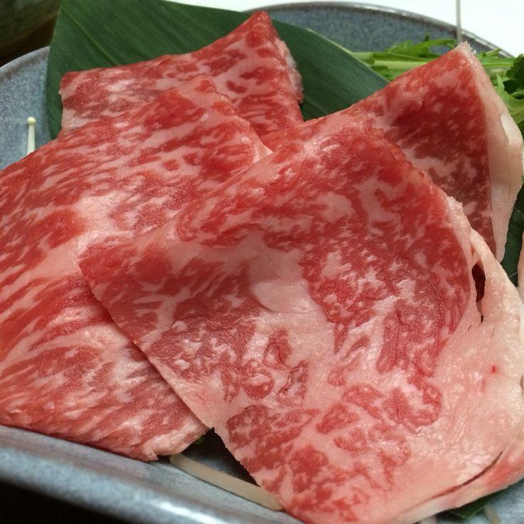 Saga-Beef