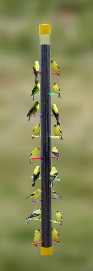 Get more goldfinches to your place and keep these sweet birds year-round! The Rainbow Finch Feeder boasts 18 ports, truly breathtaking when all perches are occupied with bird's summer plumage. Thistle