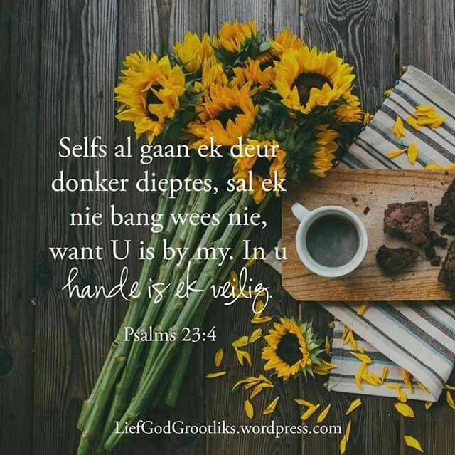 """Psalms 23:4 """"Selfs al gaan ek deur donker dieptes, sal ek nie bang wees nie, want U is by my. In u hande is ek veilig.""""   Jesus het beloewe om altyd by jou te wees. Hy loop elke tree saam met jou."""