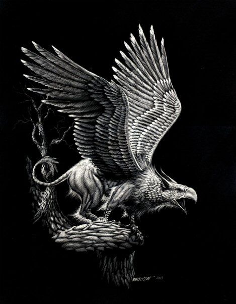 The Griffin is a legendary creature with the head, beak and wings of an eagle, the body of a lion and occasionally the tail of a serpent or scorpion.