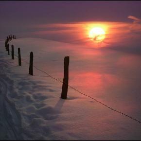 Snow - Pixdaus