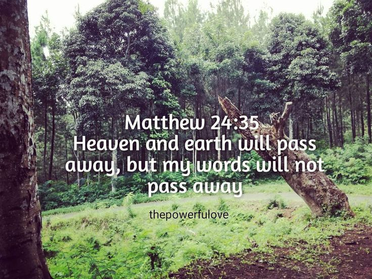 Matthew 24:35  Heaven and earth will pass away but my words will not pass away.  #love #instagood #tbt #beautiful #photooftheday #justgoshot #peoplecreatives #quotesoftheday #quotes #alkitab #bible #biblequotes #bibleverse #l4l #instacool #positive #positivevibes  #positivethinking #jesus #motivasi #motivationalquotes #motivation #inspiration #inspiring #inspirasi #inspirationalquotes  #bestoftheday  #pinterest #IFTTT #IFTTT