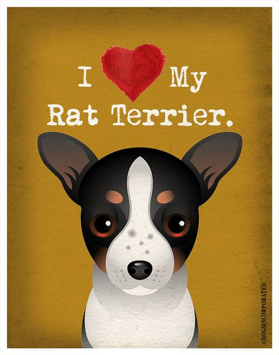 I Love My Rat Terrier  I Heart My Rat Terrier  by DogsIncorporated, $20.00