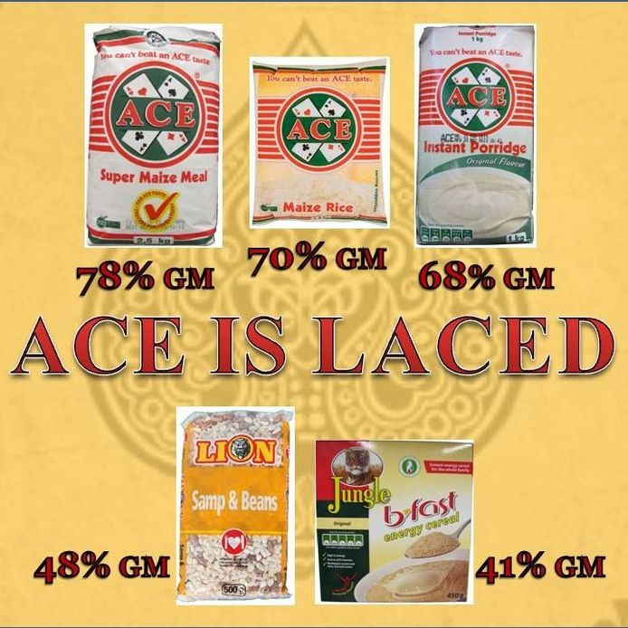 Alarm over high GM content in Tiger Brands' 'Ace' Maize Products, misleading labelling