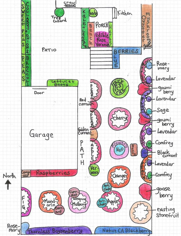 Permaculture Design Examples Google Search: An Urban Permaculture Food Forest Design In East Oakland