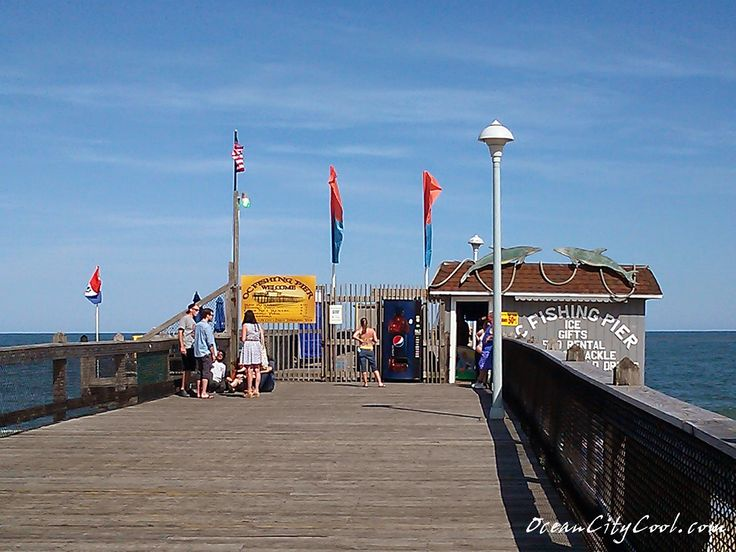 1000 images about ocean city fishing pier ocean city md for Ocean city md fishing