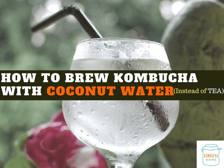 Learn how to make Kombucha with Coconut water instead of tea during the primary fermentation for a deliciously unique flavored brew.