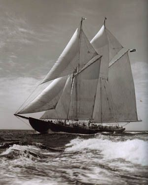 86 best images about Nice Ship... on Pinterest | Boats ...