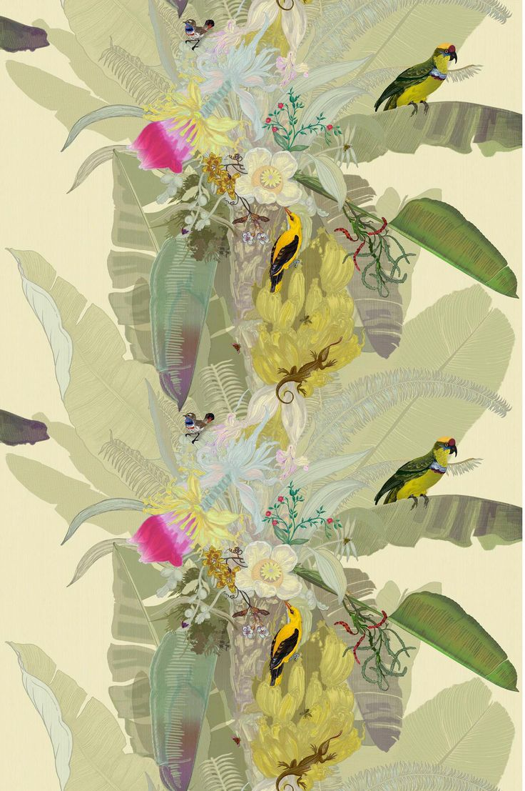 tropical, orchid, wallpaper