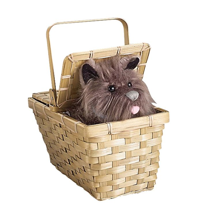 The Wizard of Oz Toto In Basket Deluxe Includes a deluxe picnic style basket with lid that opens and a stuffed toy Toto dog. Exact color of Toto may vary. This is an officially licensed The Wizard of
