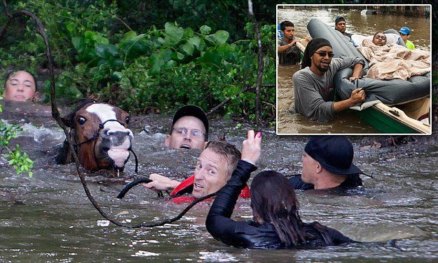 Houston flooding sees five dead after a month of rain fell in one HOUR   Daily Mail Online