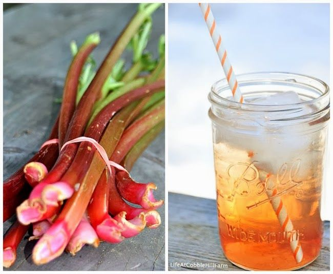 Life At Cobble Hill Farm: Food Preservation Recipe - Canned Rhubarb Syrup Concentrate