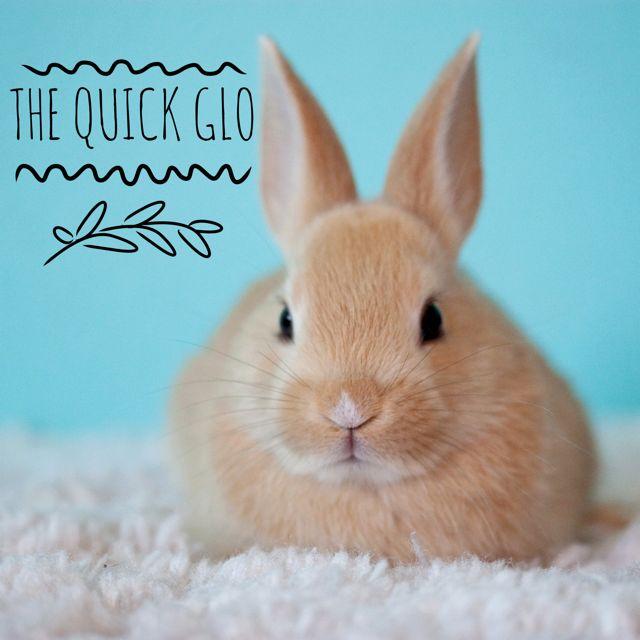 The Quick Glo | Glo de Vie Med Spa