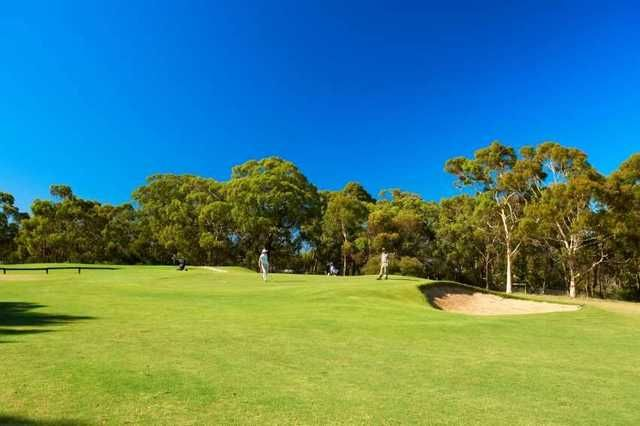 Belair National Park Golf Course: 18 holes for 2 players in a motorised cart. Includes a soft drink and a golf ball each. Normally $116, this offer $59. #Golf #Australia #GolfDeals #Belair http://crazygolfdeals.com.au/deal/south-australia--2/18-holes-for-2-in-a-motorised-cart-at-belair-national-park-golf-course--2?affiliate_code=twitter&utm_source=twitter&utm_medium=cpc&utm_campaign=twitter