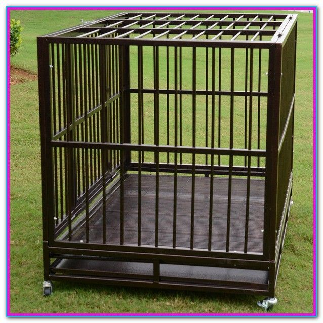 Dog Cages For Cheap Near Me Black 48 2 Door Pet Cage Folding Dog W Divider Cat Crate Cage Kennel W Tray Dc Ext Dog Crate Dog Cages Extra Large Dog Kennel