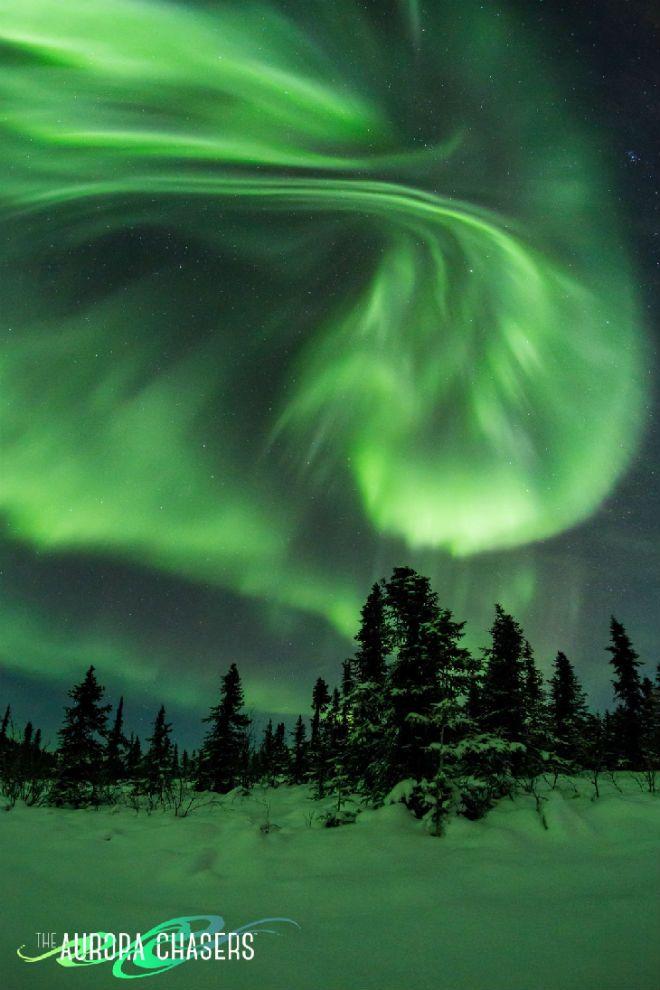 © Marketa S Murray Действительно, яркие полярные сияния теперь танцуют вокруг Северного полярного круга. Маркета С. Мюррей сфотографировала их в Фэрбенксе, Аляска: «Это зимняя страна чудес здесь», — говорит Мюррей.