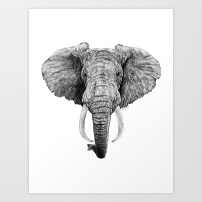 African Elephant Art Print by kelysea - $30.00